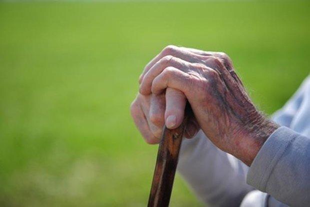 پیش بینی افزایش 10درصدی سالمندان دچار آلزایمر در ایران