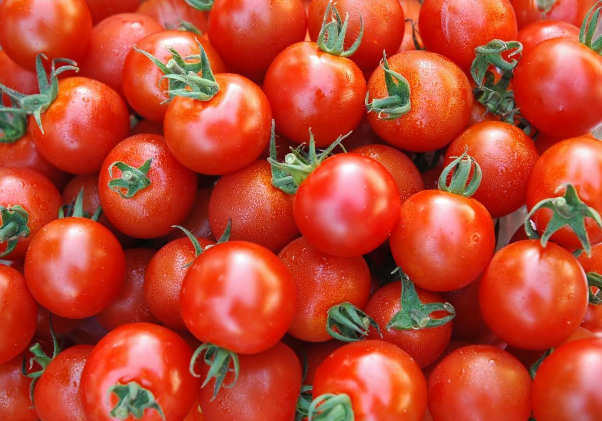فراوری گوجه فرنگی به بیش از 4 میلیون و 200 هزار تن می رسد، شروع خرید حمایتی گوجه فرنگی با نرخ 1150 تومان