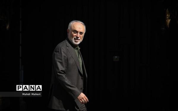توضیح صالحی درباره سفر گروسی به تهران
