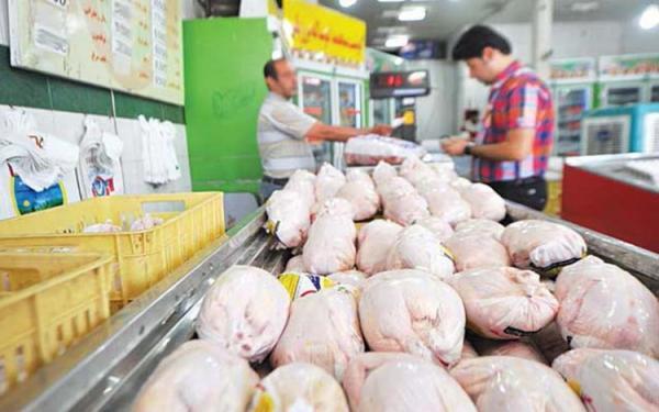بازار مرغ به آرامش می رسد؟