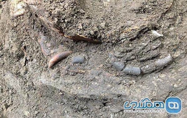 نشانه هایی از انسان شکارگر دوران باستان در غار هوتو کشف شدند